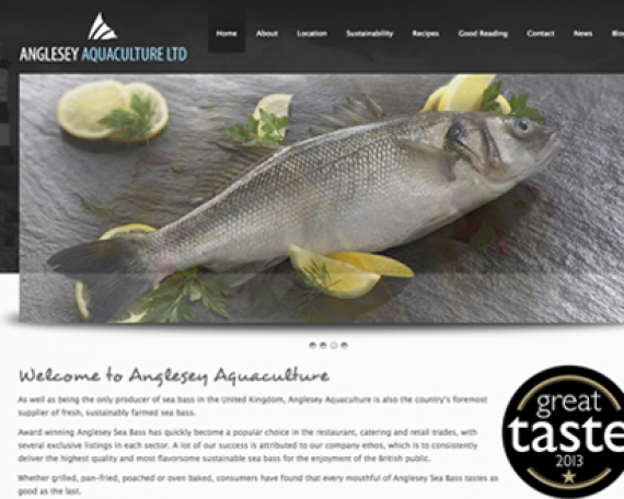 Anglesey Sea Bass Website Design